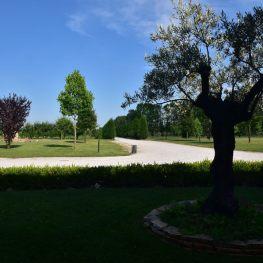 tenuta monterosso interno giardino