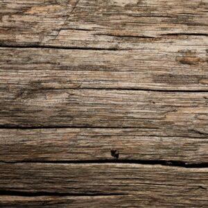 legno tenuta monterosso